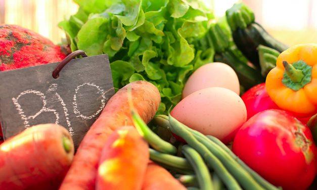 À VRAI DIRE #2 – Alimentation, quelles solutions pour manger sain ?