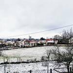 TicTac – Montceau et Toi – Le Cri du Canari