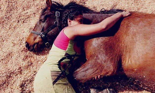SATELLITES – SOUFFLE DES CONFINS #2 – PAR LA NEGRESSE à CHEVAL