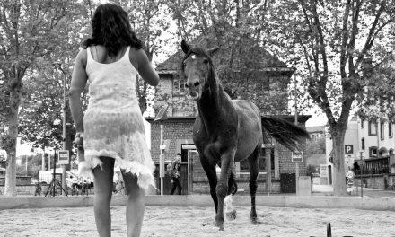 SATELLITES – Souffle des Confins #8 – Par La Négresse à Cheval