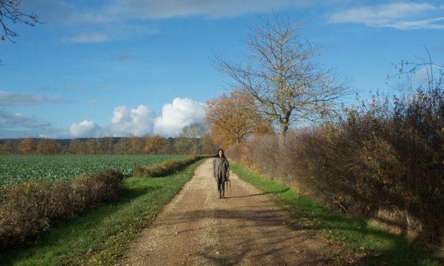 SATELLITES – SOUFFLE DES CONFINS #3 – PAR LA NEGRESSE à CHEVAL
