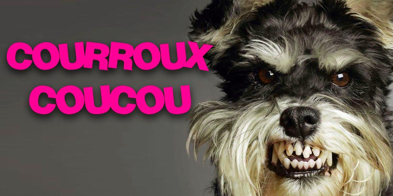 COURROUX COUCOU – Nouveau podcast énervé
